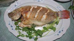 Как сделать рыбу мягче