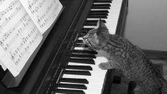 Как сочинить музыку к песне