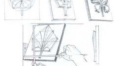 Как рисовать розетку