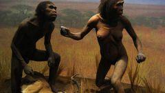 Что такое антропогенез в современной биологии