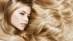 Что делать, если окрашенные волосы жесткие