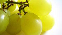 Как применять масло виноградной косточки