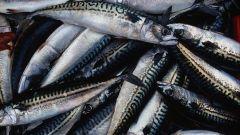 Как сделать рыбу менее соленой