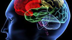 Как развить долговременную память