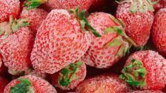 Как морозить ягоды в 2017 году