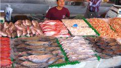 Как открыть магазин рыбы в 2018 году