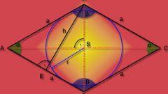 Как вычислить площадь ромба