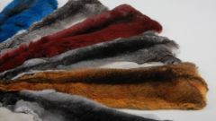Как почистить мех шиншиллы