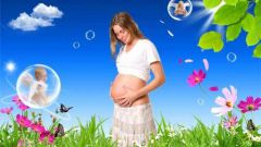 Что такое график беременности