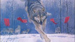 Почему волки боятся флажков