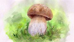 Как рисовать осенние грибы
