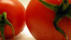 Почему помидор красный