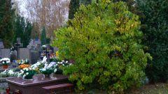 Что делать  на кладбище