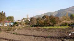 Как оформить дарственную на земельный участок