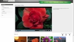 Как запустить видео в интернете