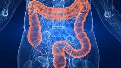 Как предупредить болезни кишечника