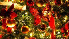 Как организовать праздничную программу для новогодних каникул
