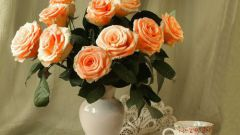 How to keep vase roses
