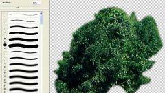 Как вырезать фото в фотошопе