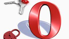 Как сохранить пароли в опере