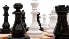 Как сделать шахматы