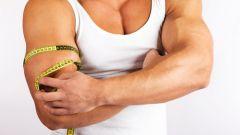 Как сушить мышцы