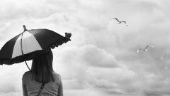 Как узнать погоду