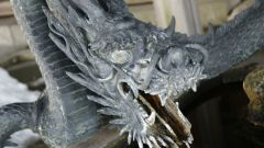Как купить дракона