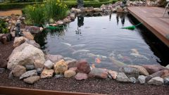Как построить пруд