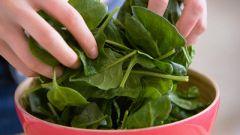Как приготовить шпинат