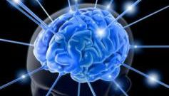 Как развивать свои интеллектуальные способности