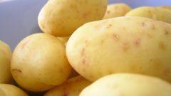 Как готовить картофель в молоке