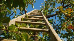 Как построить лестницу деревянную