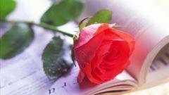 Как продать свои стихи
