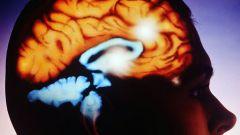 Как развивать правое полушарие мозга
