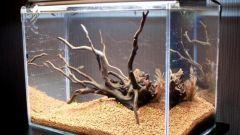 Как сделать к аквариуму корягу
