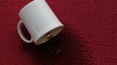 How to remove stains from the carpet