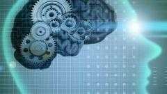 Как развить способности своего мозга