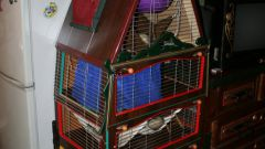 How to make a cage for a ferret