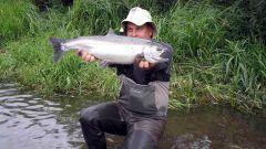 Как заработать денег в русской рыбалке