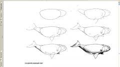 Как рисовать китов