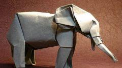 Как сделать слона из бумаги