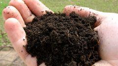 Как сохранить почву