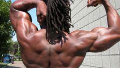 Как увеличить количество тестостерона