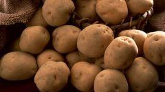 Как варить картофельное пюре