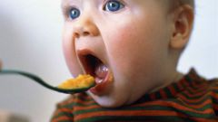 Как вводить первый прикорм