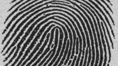 Как включить отпечатки пальцев в документ