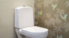 Как закрыть стояк в туалете