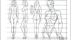 How to draw human proportion