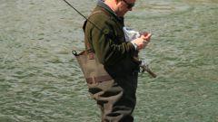 Как удить рыбу